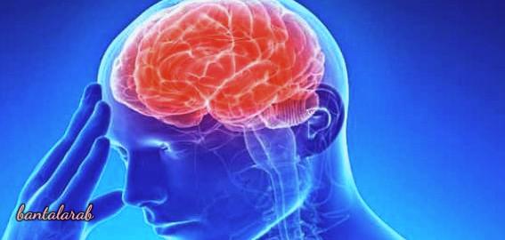 العلاقة بين السمنة والجلطة الدماغية Obesity and stroke
