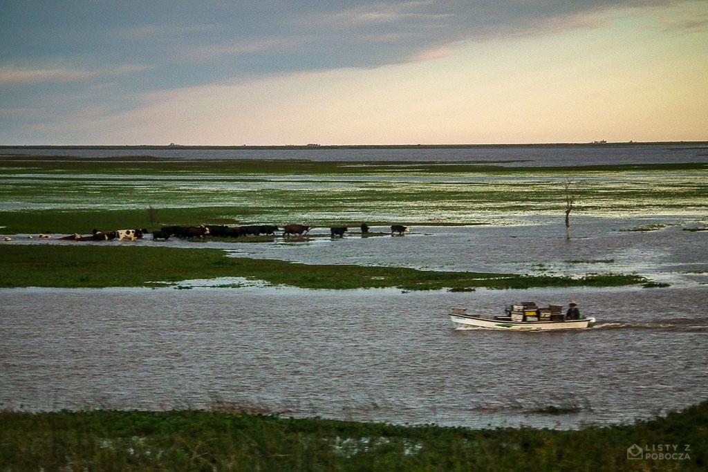Powódź w regionie Entre Ríos w Argentynie