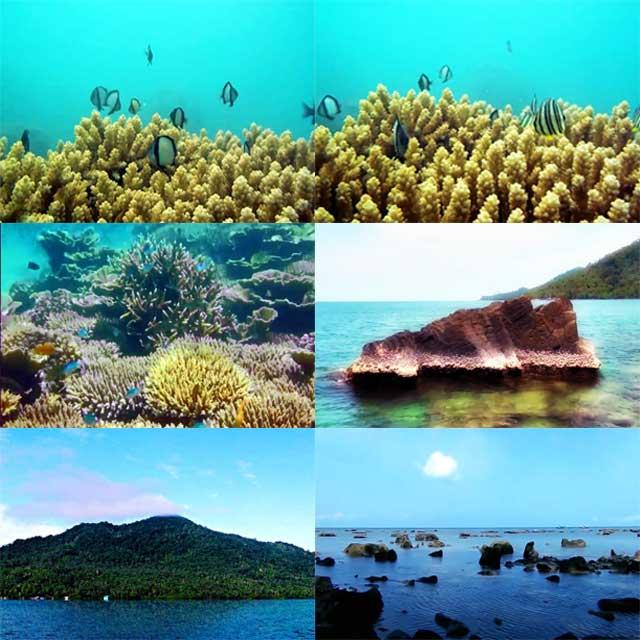 Keindahan Bawah Laut Pulau Lemukutan