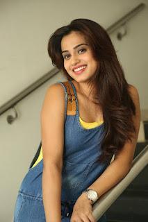 Actress Dimple Chopade Latest Pictures in Jumpsuit at Krishnashtami Success Meet  0026.jpg