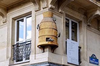 Paris : Ruche bourdonnante, délicieuse enseigne d'un autre temps à l'angle des rues Pierre Lescot et Rambuteau - Ier