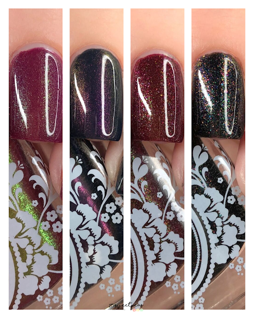 Takko Lacquer Fall Collection