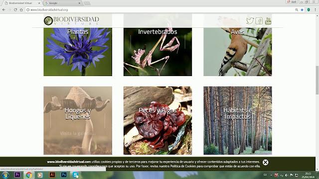 https://www.biodiversidadvirtual.org/