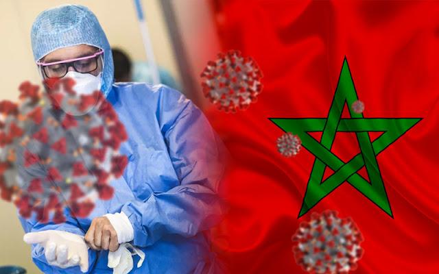 هولندا تحظر دخول المسافرين القادمين من المغرب عقب تفشي فيروس كورونا