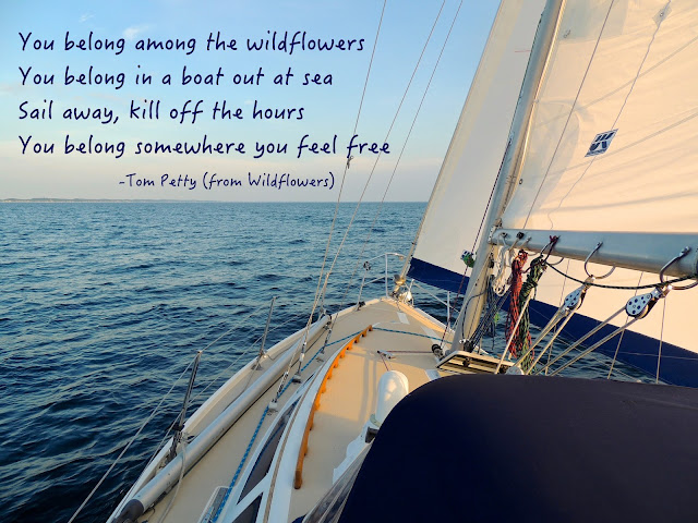 2ba58df46d5 Sail Far Live Free - Relent to Water Wanderlust!