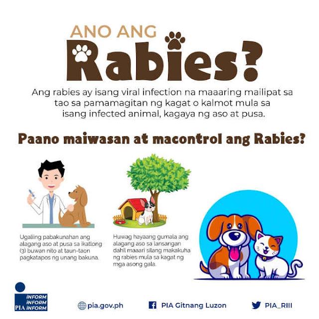 ano ang rabies