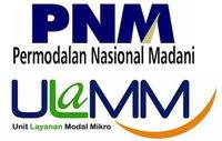 http://jobsinpt.blogspot.com/2012/03/pt-permodalan-nasional-madani-persero.html