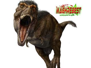 نموذج الجديد T.Rex