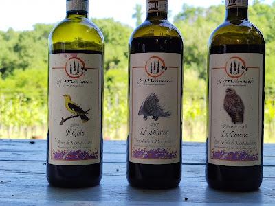 vino nobile montepulciano molinaccio
