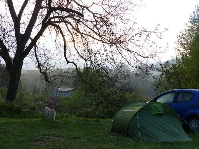 Camping Urlaub mit Hund Bensheim Ausblick Natur Stille Abgeschiedenheit Zelt Erholung