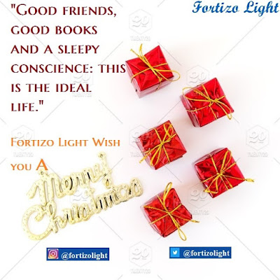 Fortizo Light wish you a merry christmas & a happy new you.. Greater you i wish for in 2020.