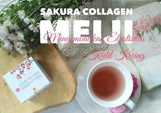 Sakura Collagen : Mengembalikan Elastisitas Kulit Kering