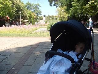 Kırcaali parkında kestirirken