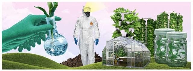 Bioteknologi Konvensional dibidang pertanian