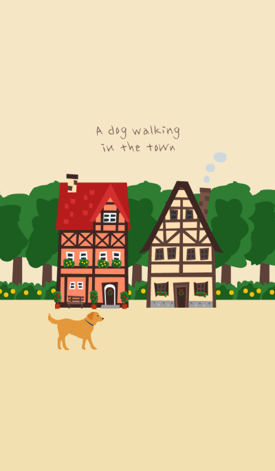 A dog walking in the town