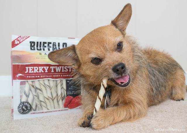 Jada with Buffalo Range Jerky Twists Treats