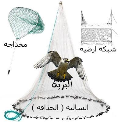 السالية و الشبكة الارضية و المخداجه  falcon trap