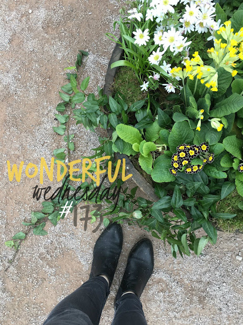 Wonderful Wednesday #173