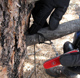 Rocky Mountain Bushcraft Tips And Tricks Use The