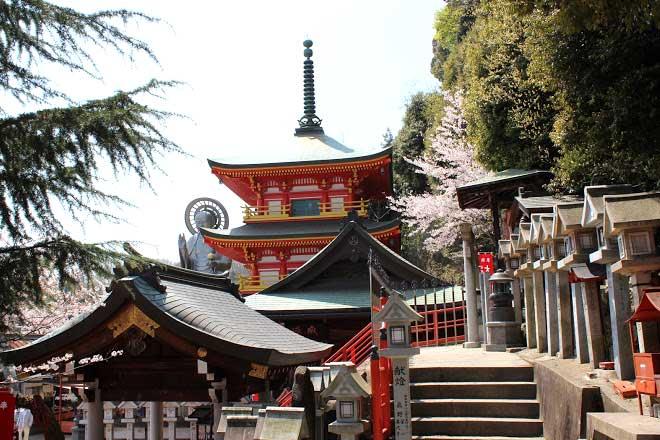 japan,temple,jadan - dan in japan,famous buddhist temple japan,temple stay japan,mountain monk japan,best temple stay in japan,hokkaido japan,dan in japan,japan temple stay,what to see in japan,foreigner in japan,travel japan,life in japan,vegan in japan,yamagate japan hotel,authentic travel japan,nara,life in japan vlog,travel japan vlog,bamboo grove japan,luxury travel to japan,japan (country)