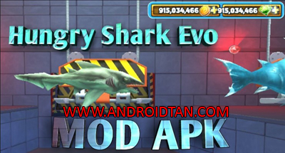 Download Hungry Shark Evolution Mod Apk v5.2.0 Mega Mod Terbaru