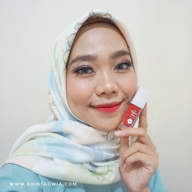 review fanbo perfect lip & cheek