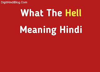 What the hell meaning in hindi