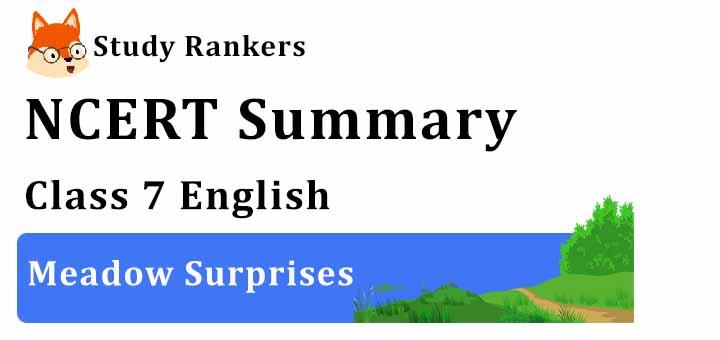 Meadow Surprises Poem Class 7 English Summary