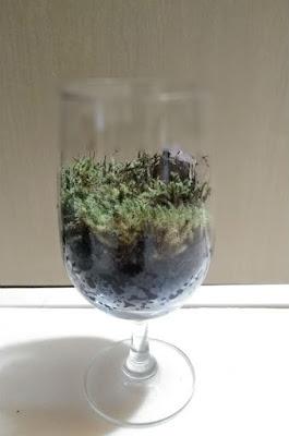 ワイングラスでコケリウム