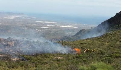 Bomberos apagando fuego matorral