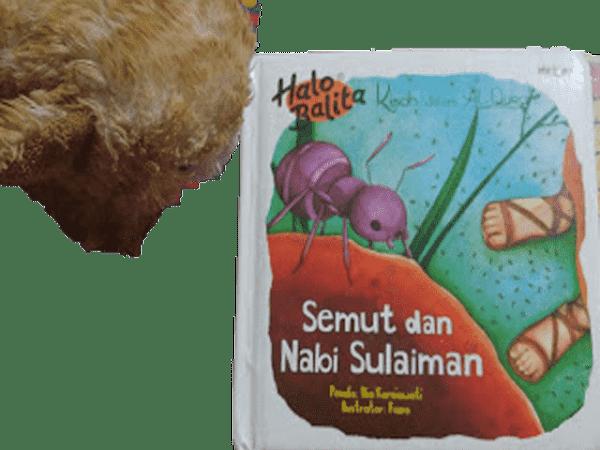 Review Semut dan Nabi Sulaiman