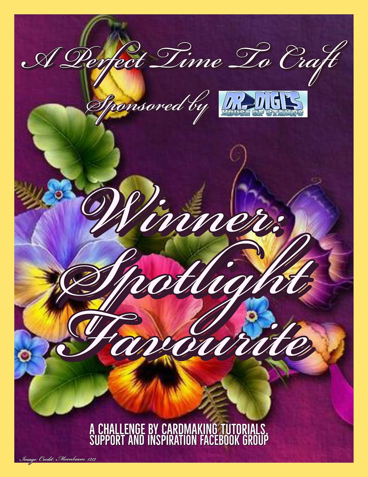 Spotlight winner June 2020