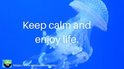 Keep calm and enjoy life | quotes whatsapp status