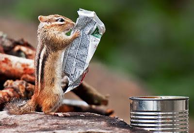 Sabias que hay animales que puede leer