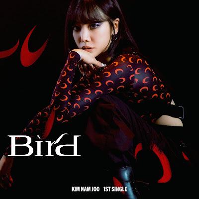KIM NAM JOO (김남주) BIRD