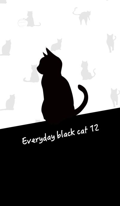 Everyday black cat12
