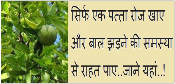 Balo ka jhadna kaise roke in Hindi.