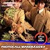 MANGA ALHAURÍN: Mandrágora de Harry Potter