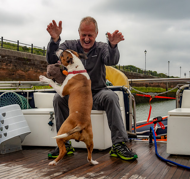 Photo of Ruby playing with Phil on the aft deck