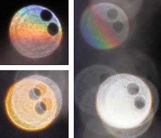 orb hole pairs