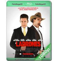LADRONES (2015) WEB-DL 1080P HD MKV ESPAÑOL LATINO