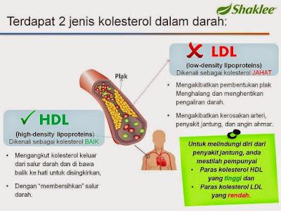 jenis kolestrol dalam tubuh