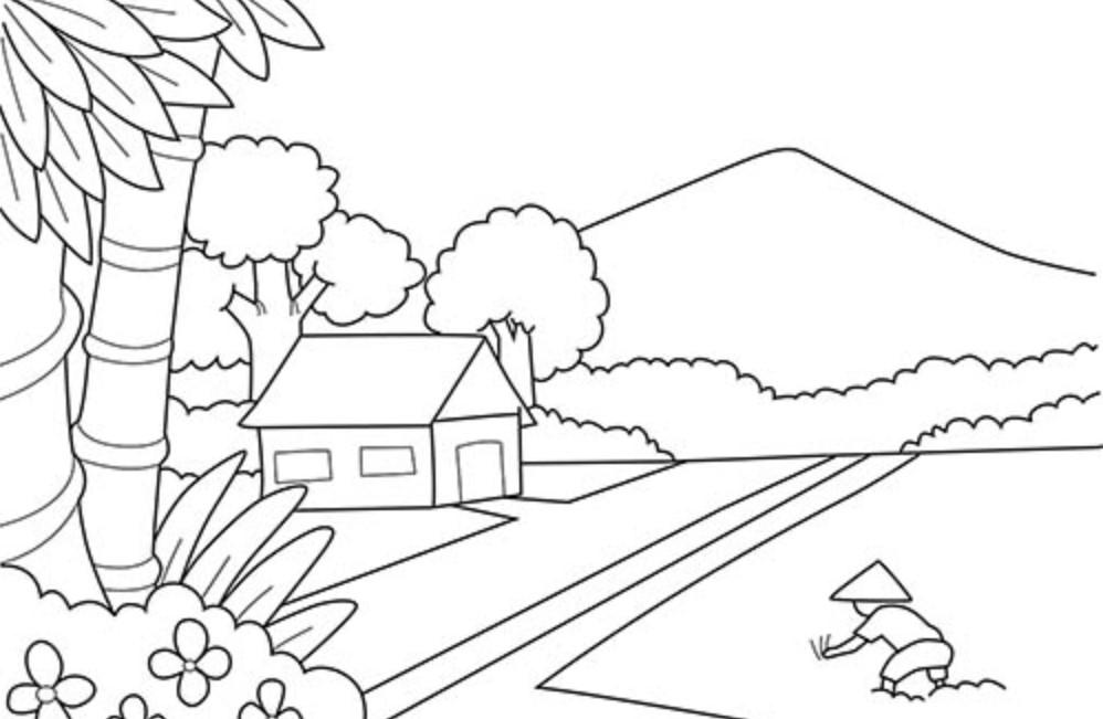 30 Download Sketsa Gambar Pemandangan Untuk Belajar Mewarnai Paud Tk Sd Kanalmu