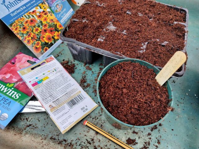 A potting tray with brightly coloured packets of seeds, a seed tray filled with compost and a plant pot full of compost