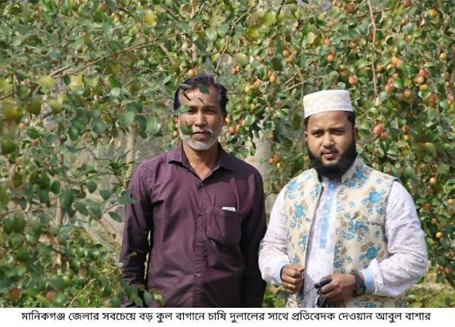 বরই চাষে স্বাবলম্বী মানিকগঞ্জের দুলাল
