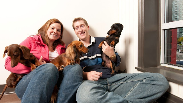 Are dachshunds good family dogs?