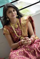 Harisha Kola 020.jpeg
