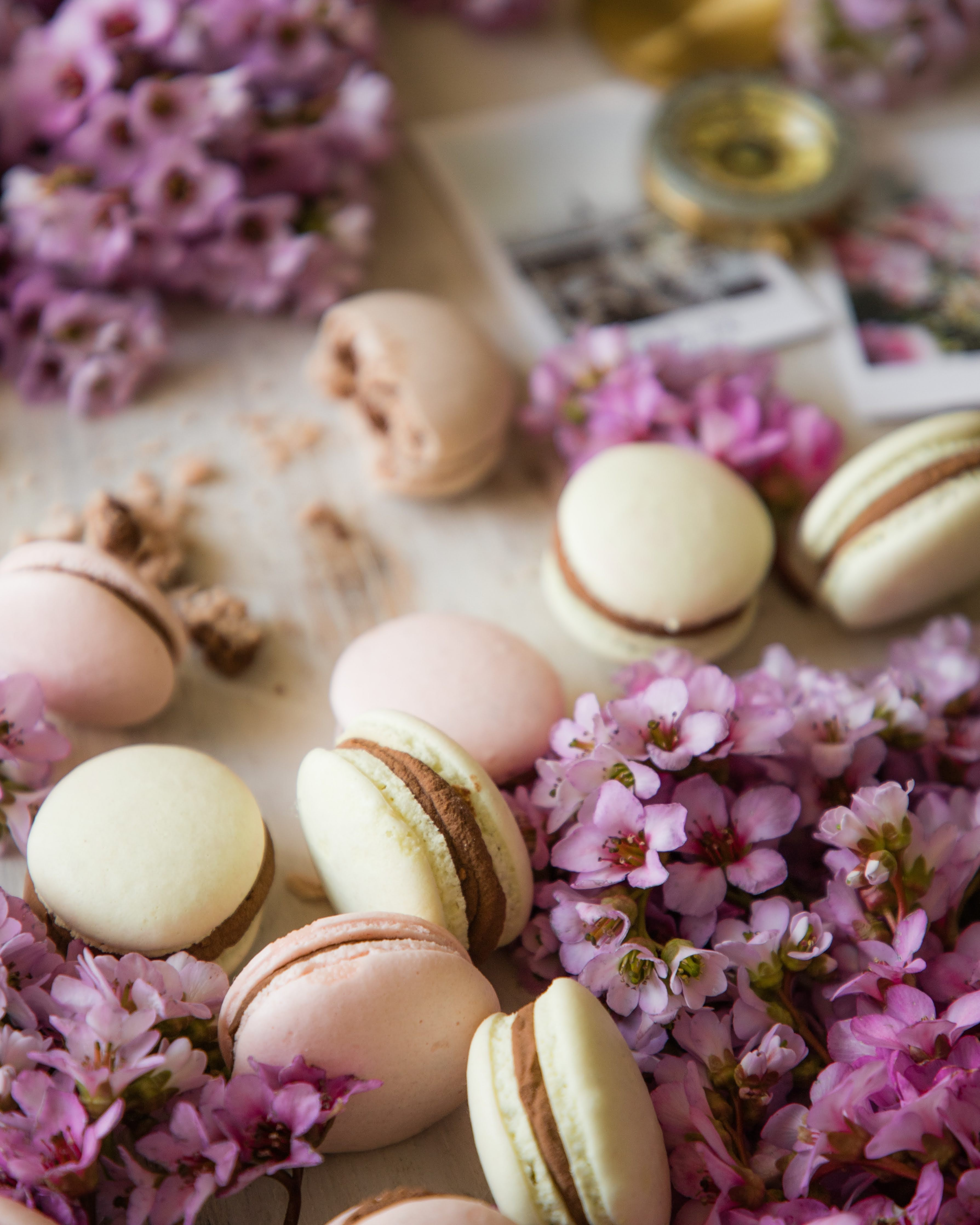French Macarons in spring flowers and vintage set up | Photo by Jovan Vasiljević Photography via Unsplash