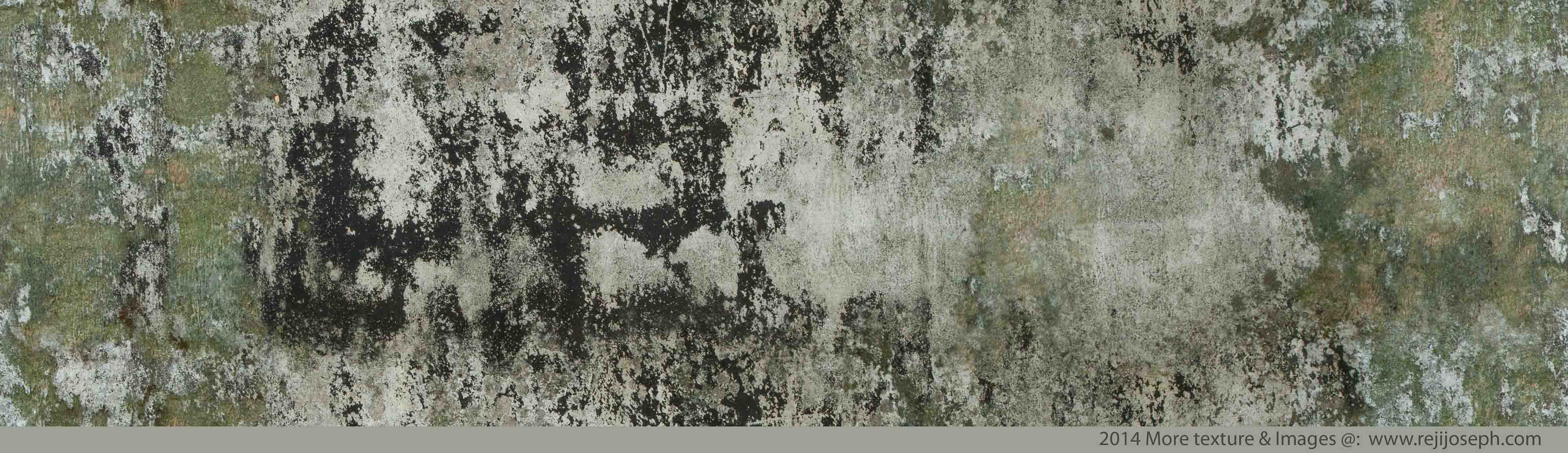 Old Wall Texture 00001