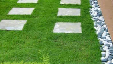 inilah 5 kelebihan memilih rumput taman untuk dekorasi